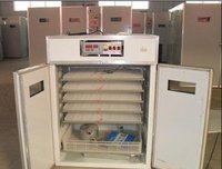 Egg Incubator (Mh-880)