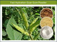 Fast Hydration Guar Gum Powder- Industrial Grade