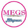 MEGA ENGINEERING & GEOTECHNICAL