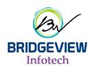 BRIDGEVIEW INFOTECH