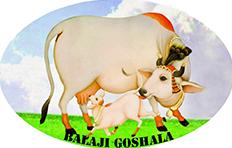 BALAJI GOSHALA