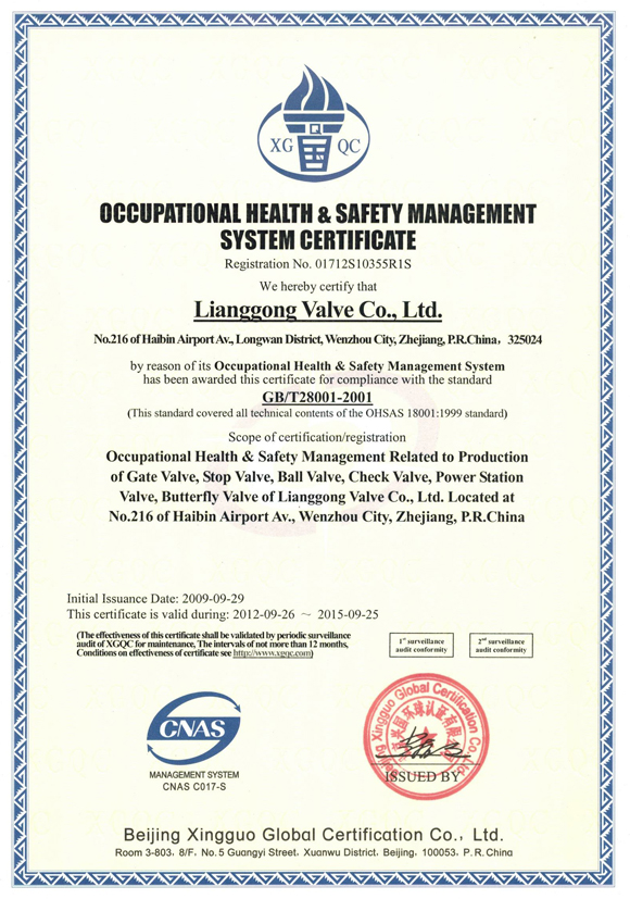 CHLG Occupational Health & Safety Management System Certificate
