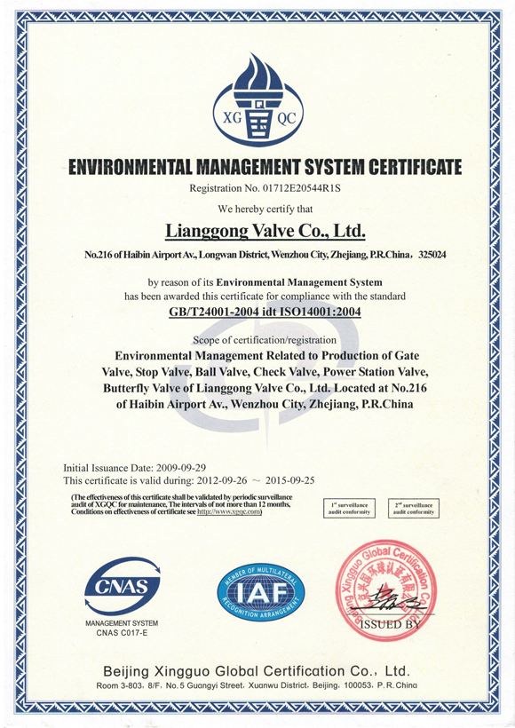 CHLG Environmental Management System Certificate
