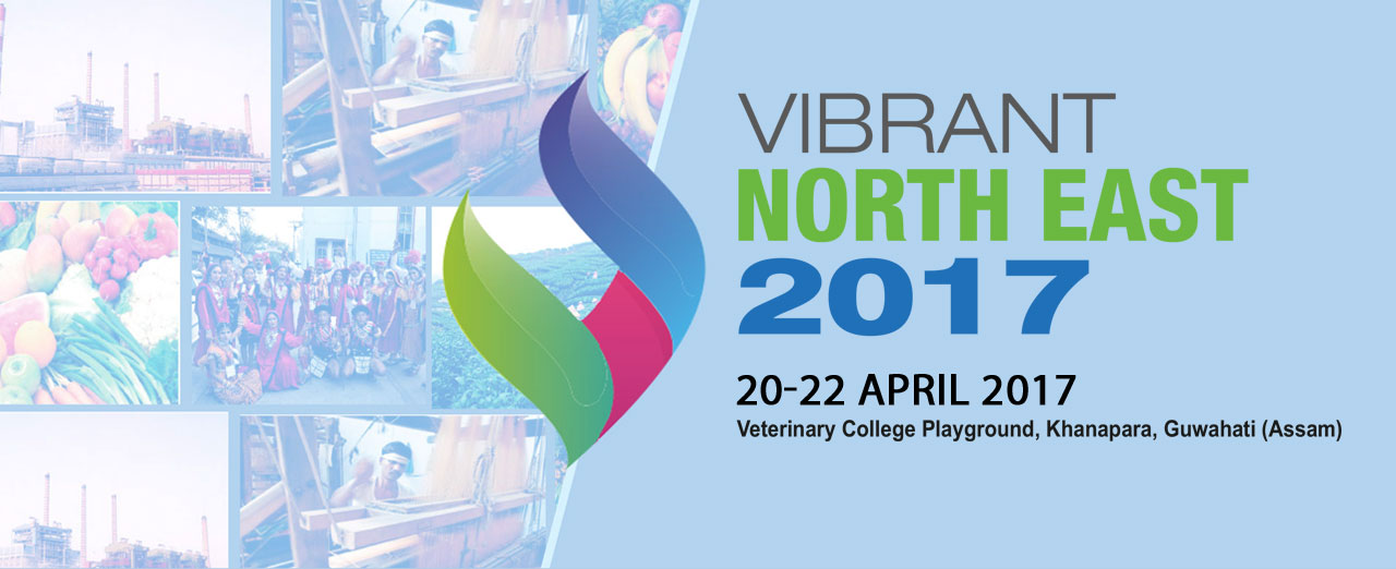 Vibrant North East 2017