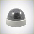 Hd Dome Camera Tl-Ip05