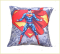 Warner Brother Cushion Covers