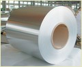 Stainless Steel Coils/Strips
