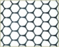 Hexagonal Net