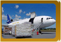 Air Freight Forwarders