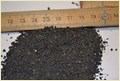 Crumb Rubber