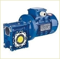Worm Reeducation Gear Motor