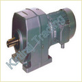 Elecon Gear Box With Crompton Motor