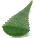Herbal Products Aloe Vera