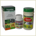Ayurvedic  Medicines For Diabetes
