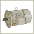 Flange Motor