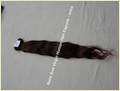 Hair Extensions Human Hair
