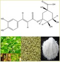 Chlorogenic Acid 