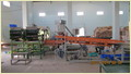 Automatic Cashew Cutting Separating Line