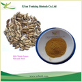Milk Thistle Extract Silymarin 80% With Silybin 30%