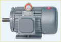 A/C Motor