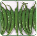 Dry Green Chilly