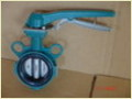 360d Multifunctional Centerline Butterfly Valve