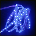 Smd3528 30leds Led Tape Light Blue Colour