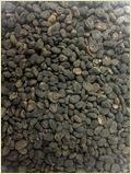 Psoralea Corylifolia Seed (Regular Quality)