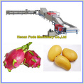 Dragon Fruit Sorting Line