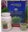 Health Care Wheatgrass Powder