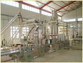 Tomato Processing Plant/Project