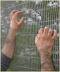 Galvanized Promax 358 Security Mesh Fencing
