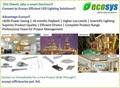 Ecosys Efficient LED Lighting