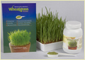 Natural Food Supplement