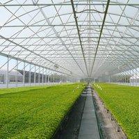 Greenhouse Supplies & Equipment