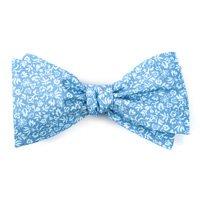 Ties & Bow Ties