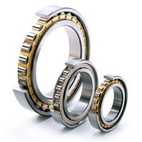 Ball & Roller Bearings / Bushes