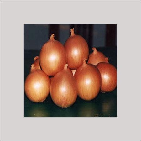 Fresh Onion in  Andheri (E)