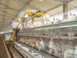 Trolley Feeding System in  Baner
