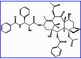 Therapeutic Agent-Paclitaxel