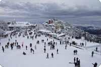Honeymoon Packages In Shimla