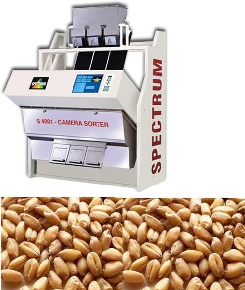 Grain Sorting Machines