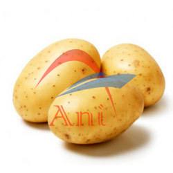 Potatoes in   nethaji 4th cross sreet ponmeni main road