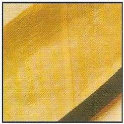 Two Ply Laminated Belt in  Bhandup (W)