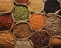 Pulses in   Near Police Station