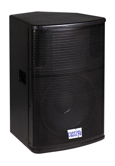 Single 15-inch Loudspeaker CS-115