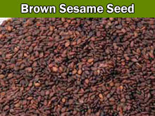 Brown Sesame Seeds in  Nerul