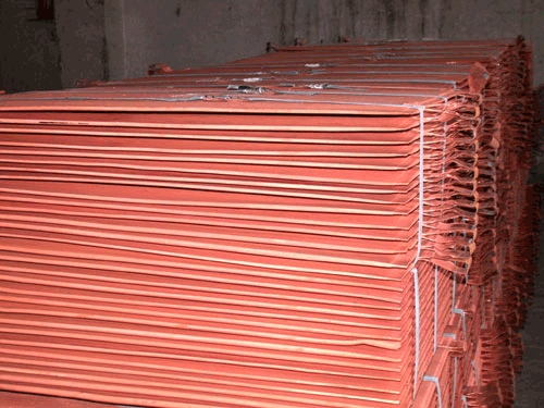 Copper Cathode in  Netaji Subhash Place