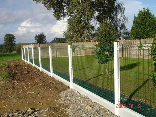 Welded Wire Mesh Garden Fence in Anping County Hengshui