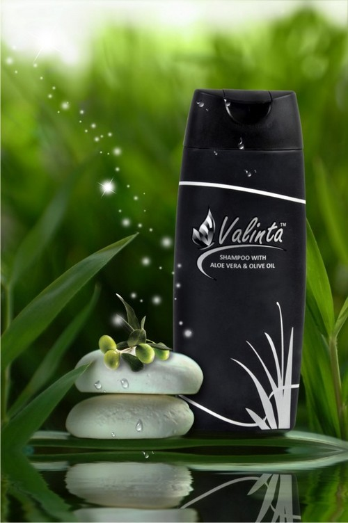 Shampoo With Aloe Vera And Olive Oil